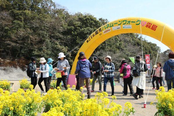 2017.03.19 菜の花C-422